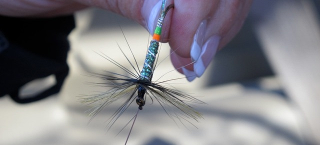 River and weather conditions factor into choosing the correct fly for fishing. Hilary nangle photo